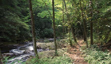 jacks-river-trail-445x260.jpg
